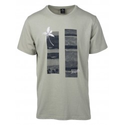 T-SHIRT RIP CURL SEA SCENE LIGHT GREEN